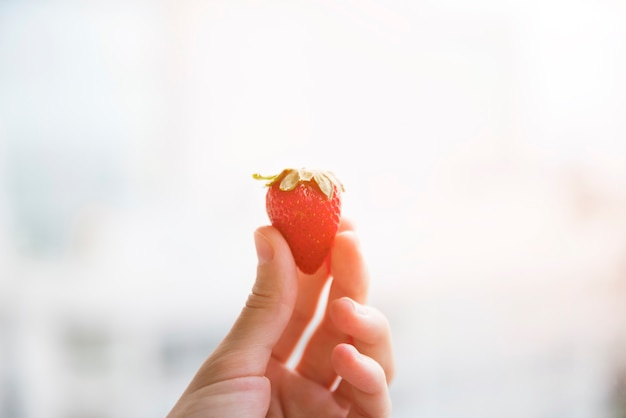 Close-up of woman's hand holding strawberry in hand