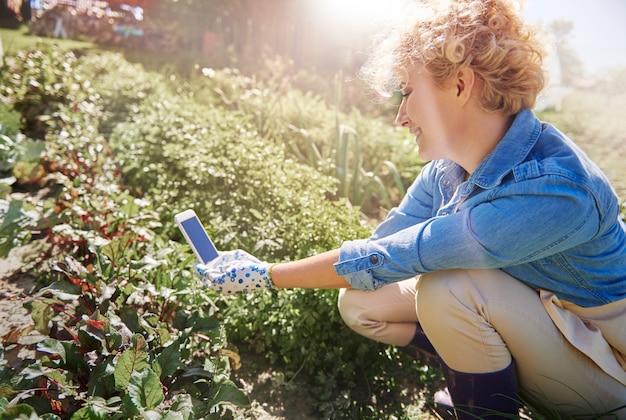 Primo piano sulla donna che si prende cura del suo giardino
