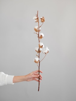 Close-up woman with branch with cotton flowers