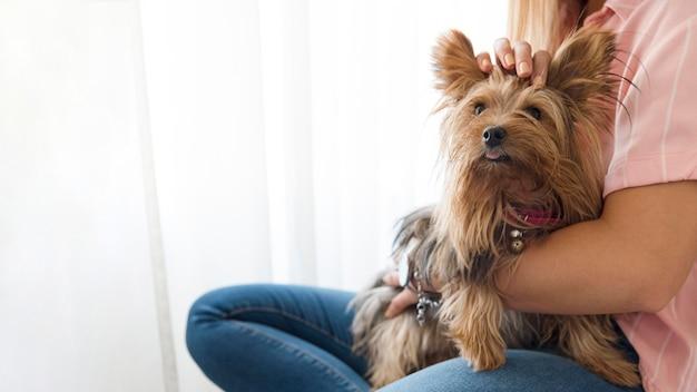 犬と女性をクローズアップ