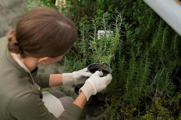 植物で働く女性をクローズアップ