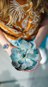 Close up of womans hands holding flower in pot