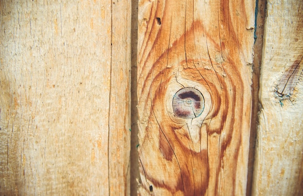 Close-up of the wood texture. vertical lines on the door. natural drawing on a wood background. carpenter's work.