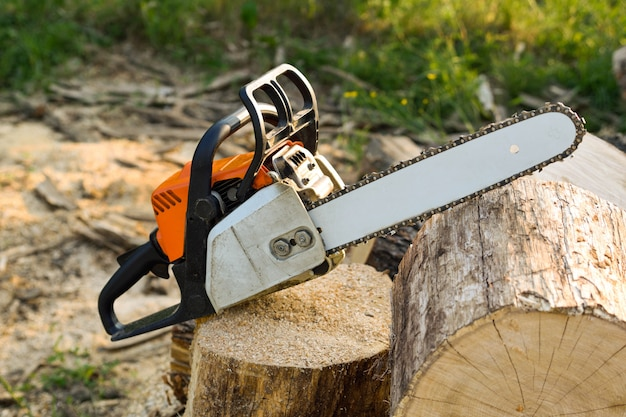 Close-up of woodcutter sawing chain saw in motion, sawdust fly to sides. a person using a chainsaw on pretty wood.woodcutter saws tree with chainsaw on sawmill