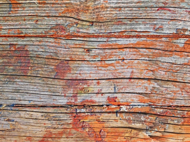 Close up of wooden texture outdoors