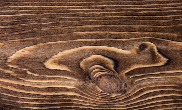 Close-up of wooden texture with circles and lines
