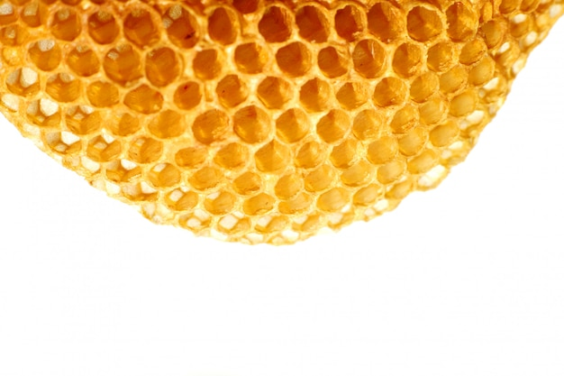 Close up yellow beautiful honeycomb with honey