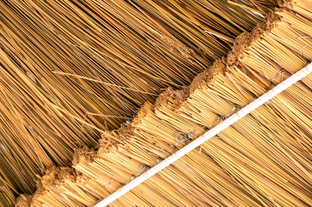 Close-up of the yellow straw roof