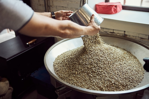 Close up of young man's hands pouring green coffee beans into metal hopper