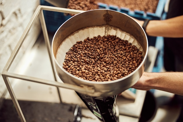 Close up of young man's hands with brown roasted arabica coffee beans in stainless steel bowl