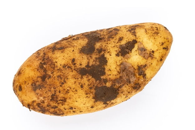 Close up on young potato