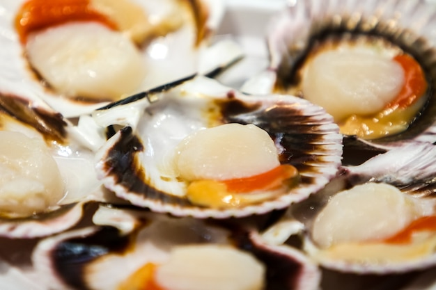 Close view of the scallops on a plate