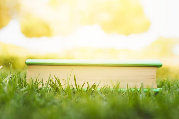 Closed book on grass at sunlight