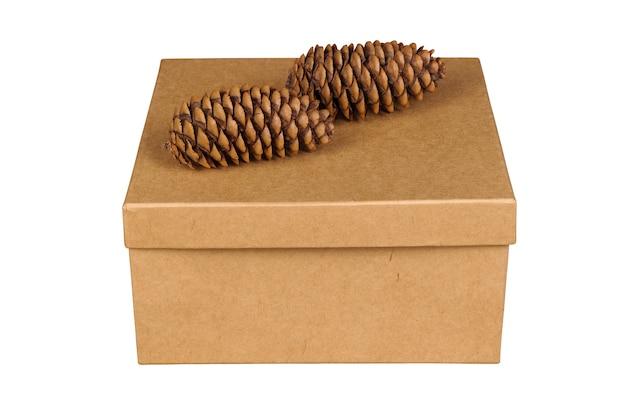 Закрытый картон на изолированном белом фоне. подарочная коробка с шишками на крышке. крупный план