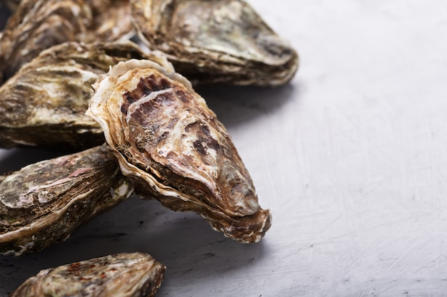 Closed oysters on concrete background. healthy sea food. close up shot