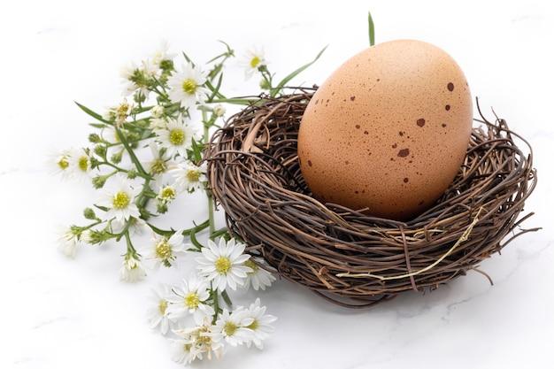 흰색 작은 꽃과 함께 새 둥지에 발견된 닭 알의 폐쇄