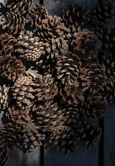 Closeup of beautiful pinecones piled up together in a dark place