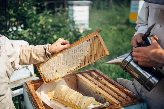Closeup of beekeeper holding a honeycomb