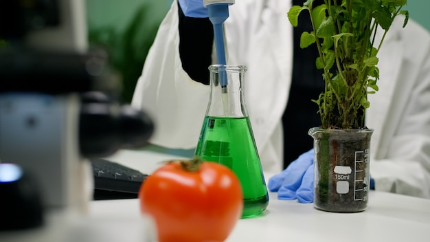 Closeup of botanist reseacher woman taking dna liquid test from medical glass with micropipette putting on sapling analyzing organic growing. scientist examining agriculture in botanical lab