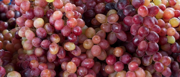 Closeup of bunches of grapes