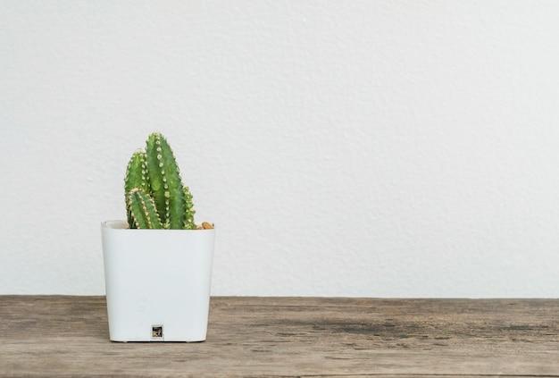 흐리게 나무 책상과 흰색 시멘트 벽에 흰색 플라스틱 냄비에 근접 촬영 선인장