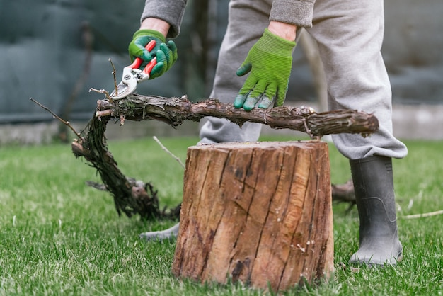 Closeup of a caucasian male in safety gloves removing branches from a log with pruning shears
