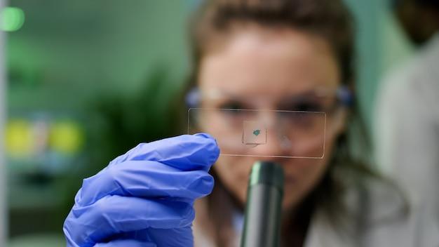 Primo piano di uno scienziato chimico che guarda un campione di foglie verdi che controlla la mutazione genetica