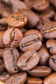 맛있는 커피, 향긋한 커피 콩을 생 또는 볶은 형태로 만들기 위한 근접 촬영 커피 콩