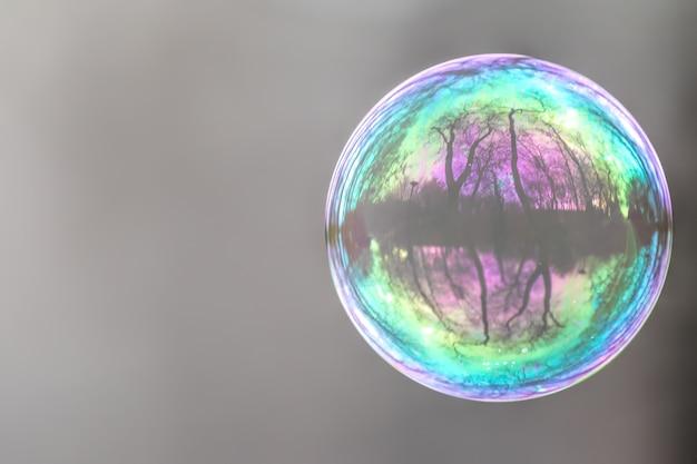 Primo piano di una bolla colorata con un bel riflesso di alberi su di esso