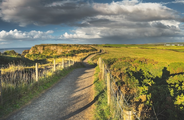 Крупным планом сельская дорога среди полей северной ирландии, удивительный ирландский пейзаж, залитый солнцем