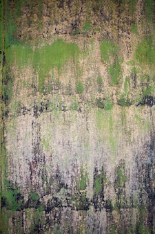 Closeup of the decayed old green wall