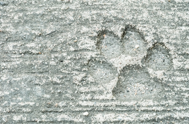 Closeup dog footprint at dirty cement floor texture background
