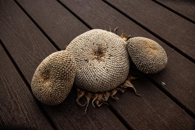 Primo piano delle teste asciutte di girasole con semi maturi su una superficie di legno