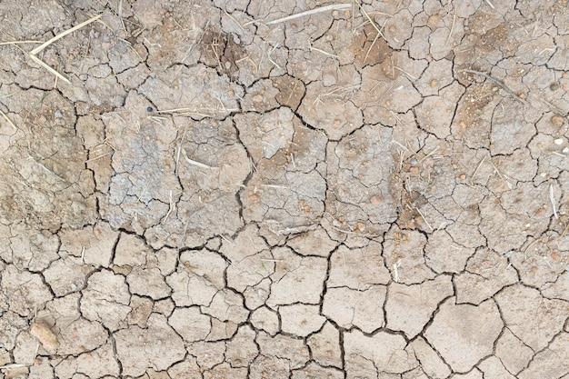 Крупным планом сухой фон почвы, вид сверху