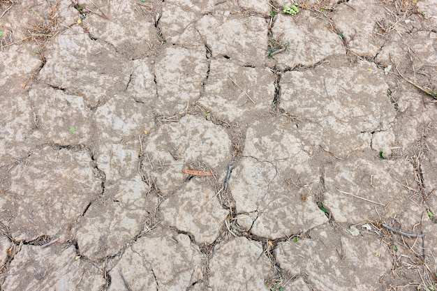 Closeup dry soil background