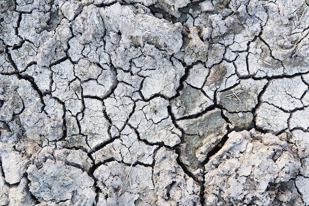 Closeup of dry soil. cracked texture of ground. ground in drought, soil texture and dry mud, dry land. top view
