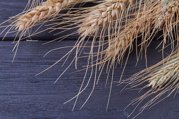 Крупным планом колосья пшеницы ячменя или ржи на черном фоне
