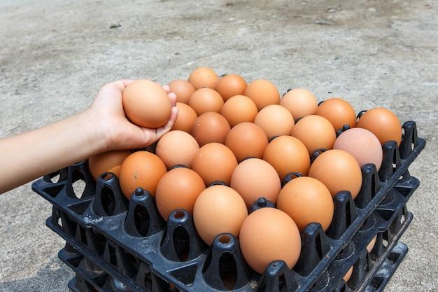 Крупным планом яйцо подробно еда