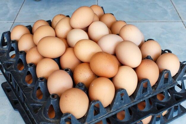 Крупным планом яйцо подробно объект еды