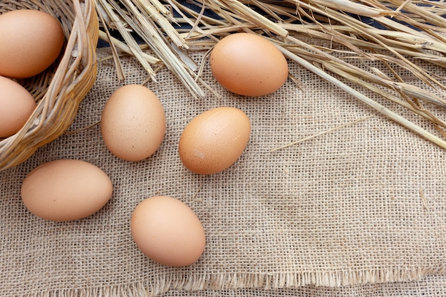 Closeup egg on sack