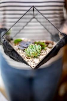 多肉植物ガラスフローラリウム植物学アート構成を保持しているクローズアップ女性花屋デザイナーの手