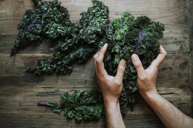 Closeup of fresh green kale