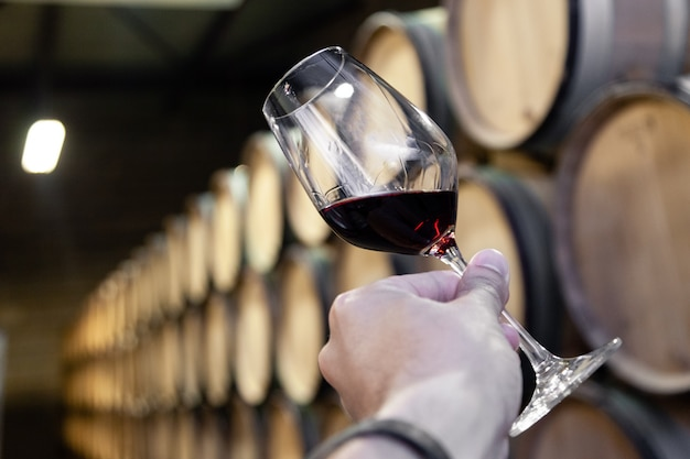 Closeup hand with glass of red wine on background wooden oak barrels stacked in straight rows in order, old cellar of winery.