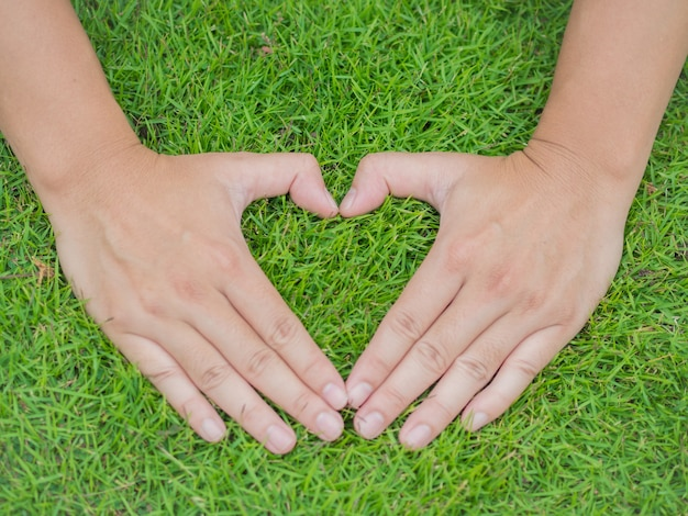 Closeup hands in the grass with the form of heart shape