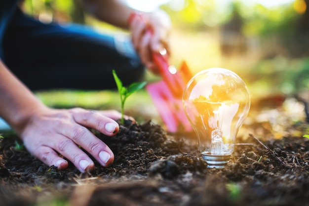 シャベルを使用して、地面に電球が光る小さな木を植える女性のクローズアップ画像
