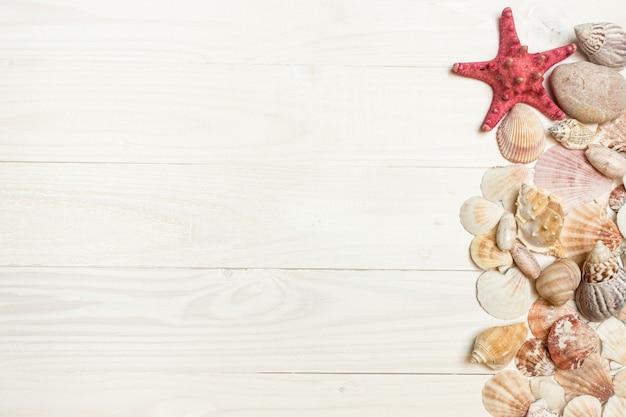 白い木の板の上に横たわっている貝殻とヒトデのクローズアップ画像