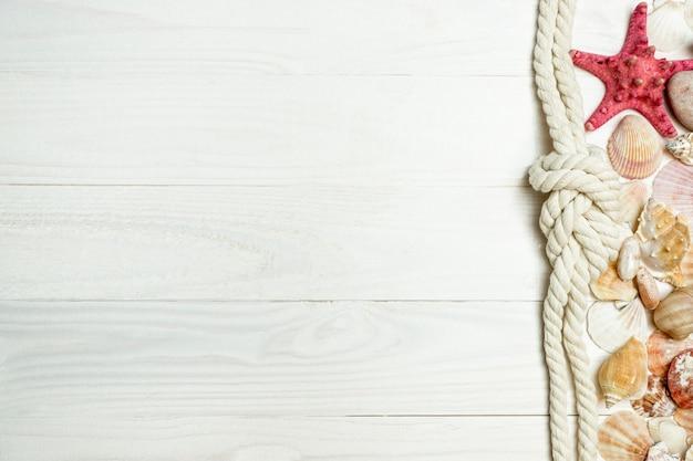 白い木の板の上に横たわっている貝殻、ロープ、ヒトデのクローズアップ画像