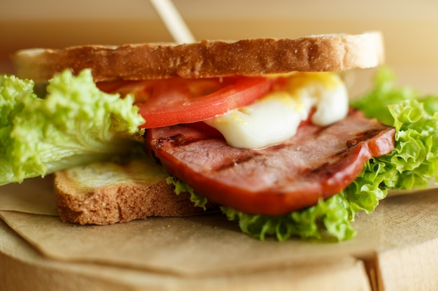 Closeup juicy sandwich with bacon, fresh vegetables, green salad and dark lines after grill