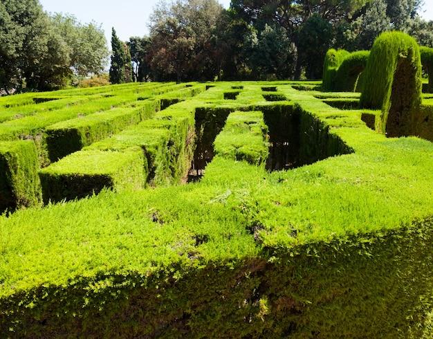 Closeup of labyrinth at parc del laberint