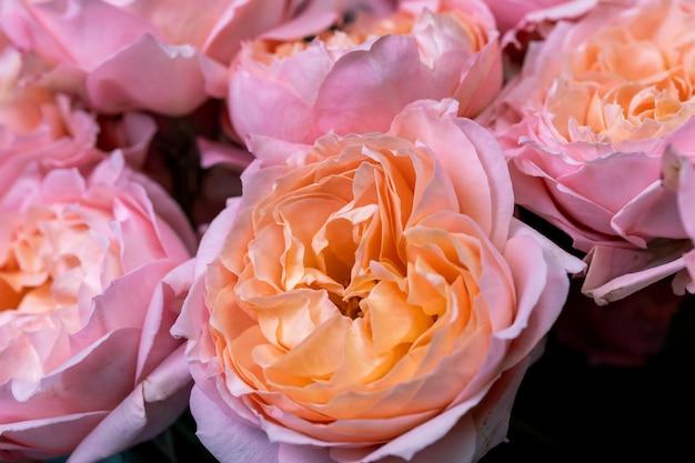 혼합 꽃 꽃 배경 및 벽지 꽃 가게 개념의 근접 촬영 큰 아름다운 꽃다발...